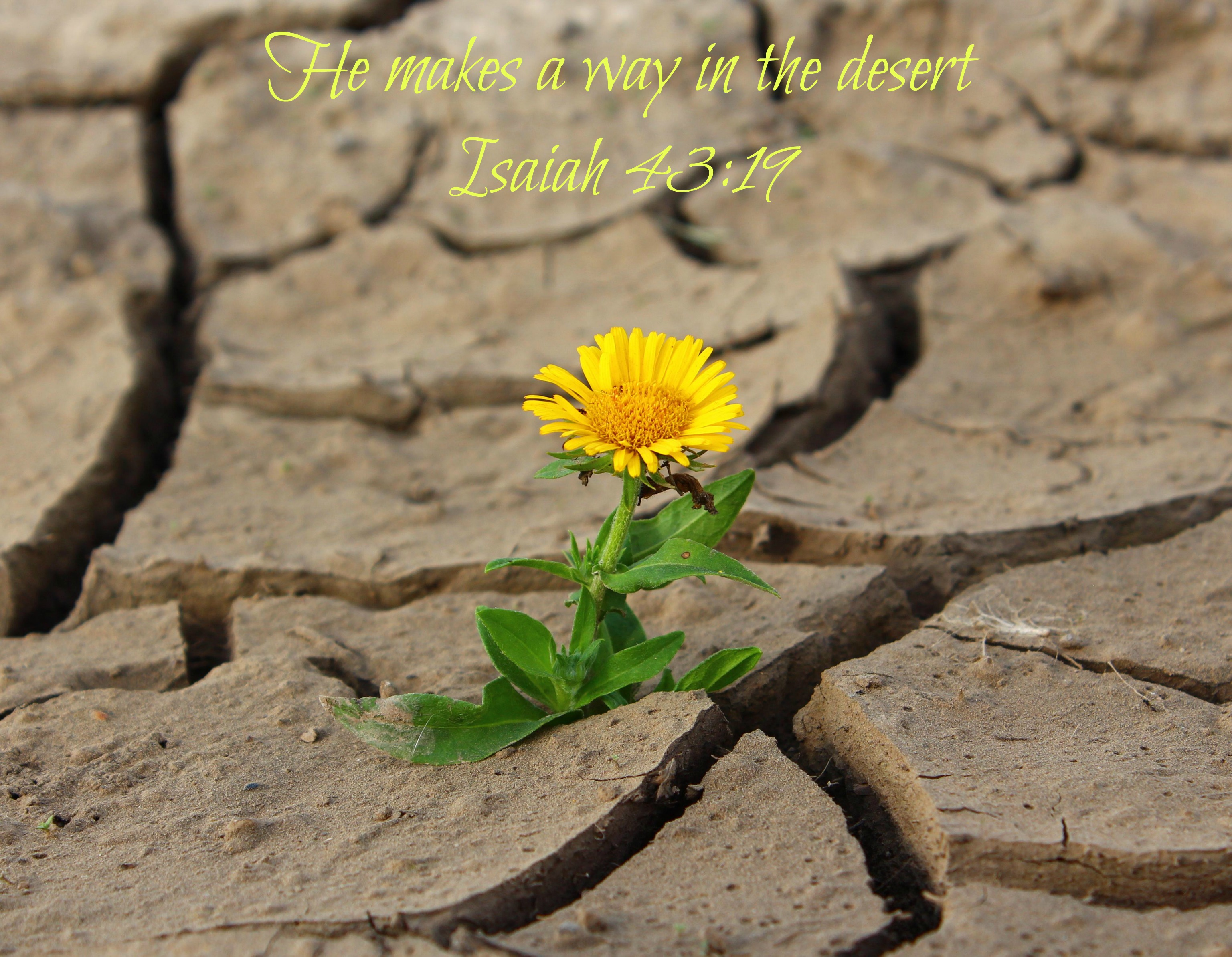 Where is Your Hope Today?
